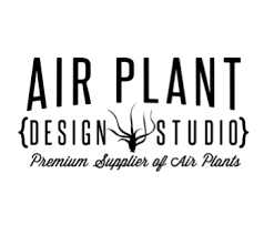 Air Plant Design Studio coupons and promo codes