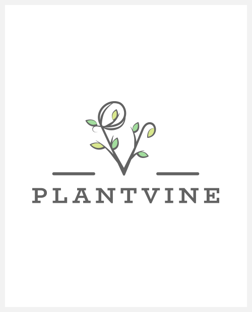 Plant Vine coupons and promo codes
